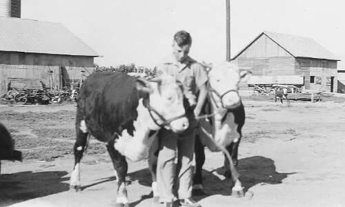 Harold D. joins the family farming and ranching operation